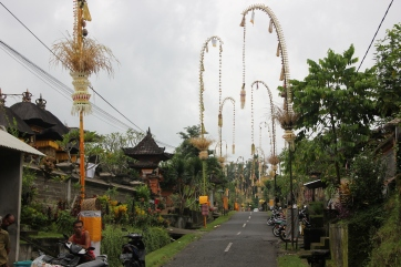 Chemin au coeur du Bali Traditionnel