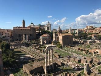 Vue sur le Forum Romain et le Mont Palatin